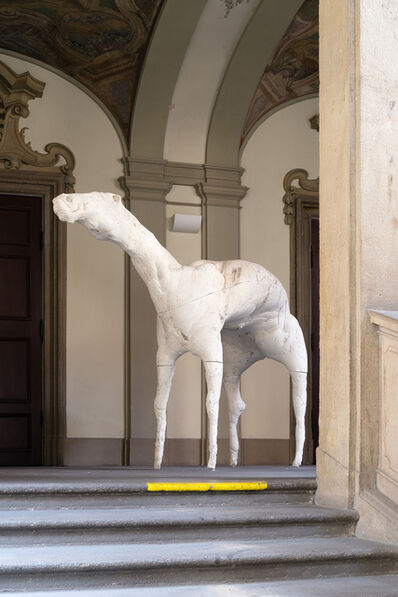 Jan Zelinka, 'In Search of the Essence /Horse ', 2014