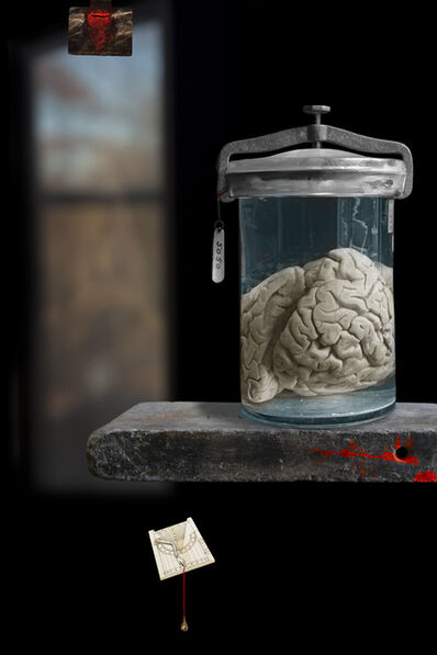 Olivia Parker, 'Vanitas - The Murderer's Brain', 2010