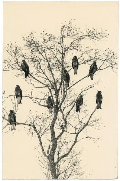 Yamamoto Masao, '#1652, Kawa = Flow', n.d.