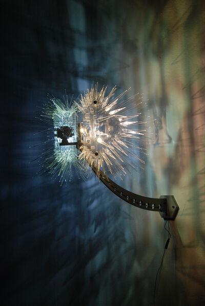 Paul Myoda, 'Spines #2', 2012