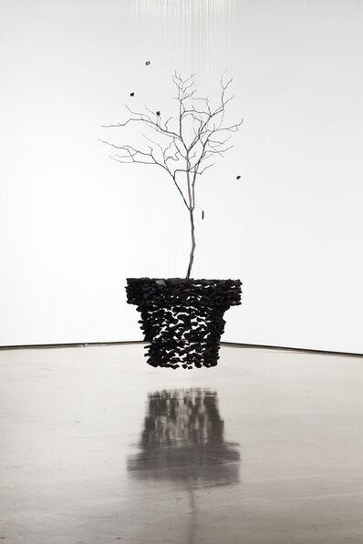 Seon-Ghi Bahk, ' Installation 화분'