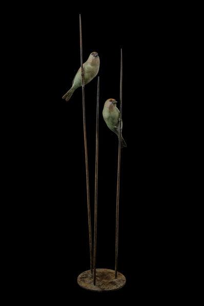 Adam Binder, '2 Green Finches', 2016