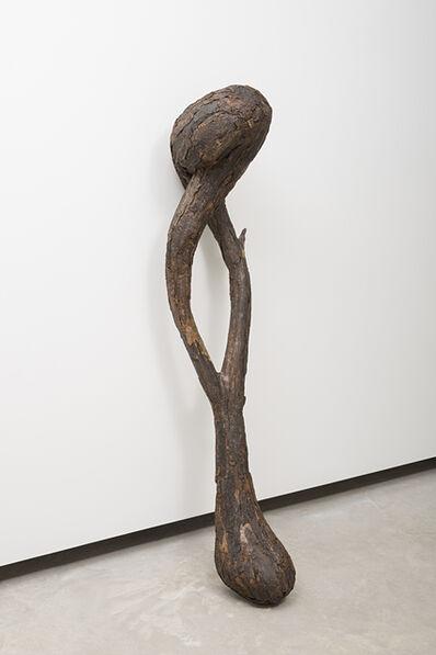 Henrique Oliveira, 'Pau-osso', 2016