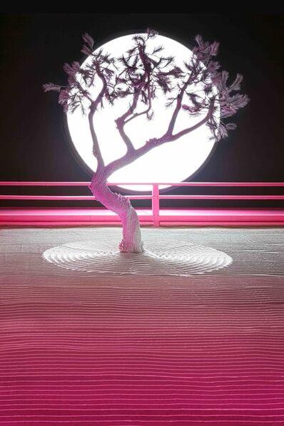 Daniel Arsham, 'Lunar Garden installation', 2019