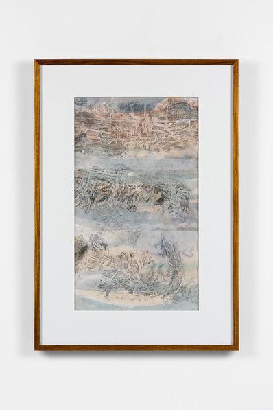 John Wolseley, 'Beneath the bark – engraved biographies', 2019