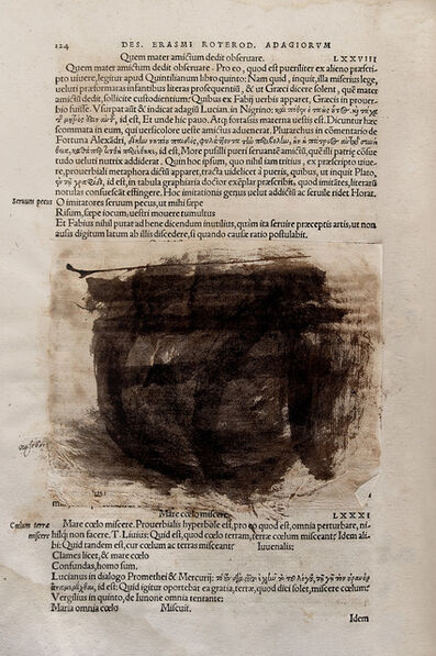 Joan Fontcuberta, 'Deletrix: Erasmus #5', 2006