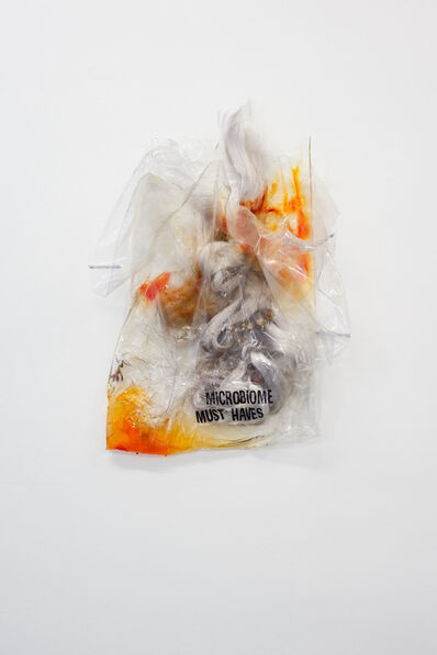 Bianca Bondi, 'Stir (Microbiome Must Haves)', 2018