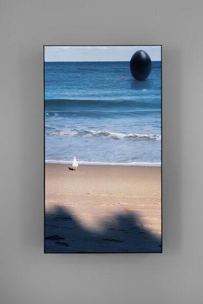 Rachel Rose, 'South Beach Seagull', 2020
