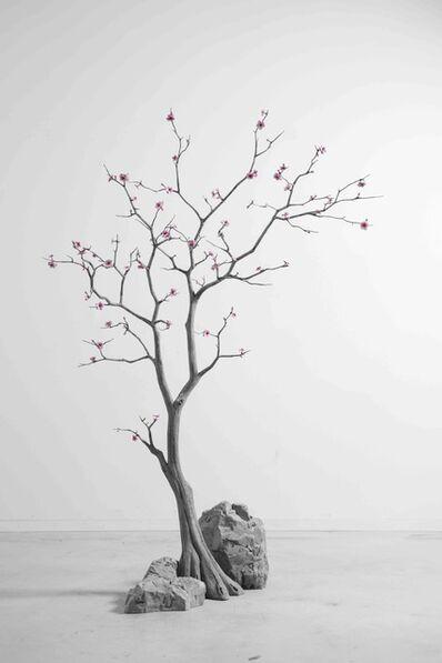 Hans Op de Beeck, 'Blossom Tree', 2018