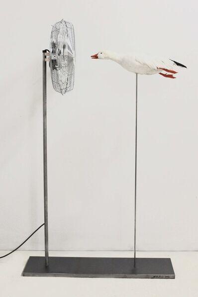 Sebastian Errazuriz, 'Duck Fan', 2013