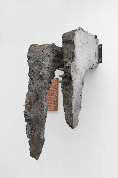 Tomás Díaz Cedeño, 'Usando este cuerpo', 2019