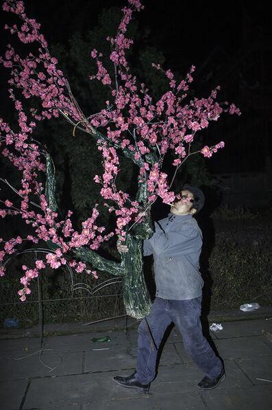 Li Feng, 'untitled', 2009