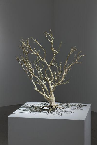 Harry Geffert, 'Longstanding', 2013
