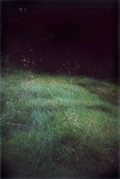 Jitka Hanzlová, 'Forest #6, Untitled (Singing Grass)', 2004