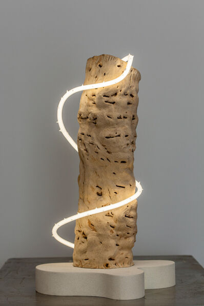 Lisa Schulte, 'Untitled Wood Series #8 '