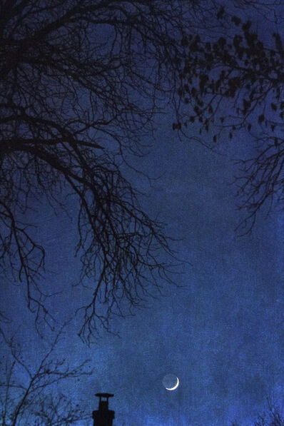 Wendi Schneider, 'Tangled Up in Blue, Denver, CO', 2018