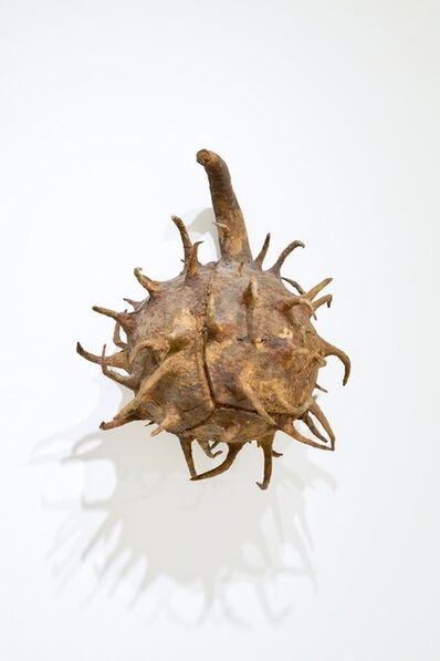 Ming Fay 費明杰, 'Buckeye Seed', 1985
