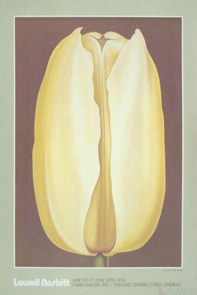 Lowell Nesbitt, 'Yellow Tulip', 1976