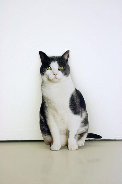 Matt Keegan, 'Domestic Cat', 2009