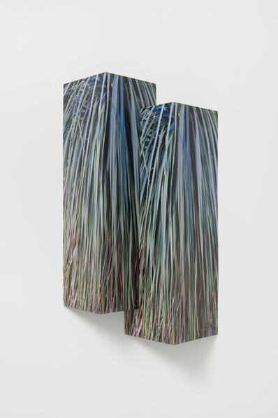 Letha Wilson, 'Double Palms Steel Fold', 2020