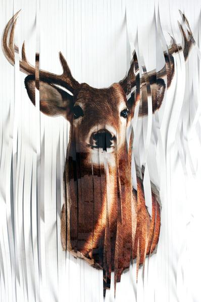 Martin Rondeau, 'Head Deer I', 2017