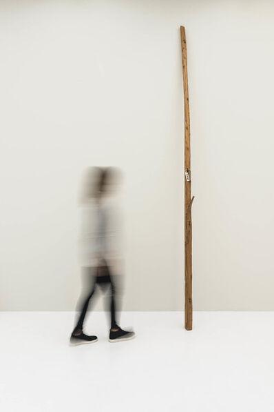 Jimmie Durham, 'Bom Dia', 2010