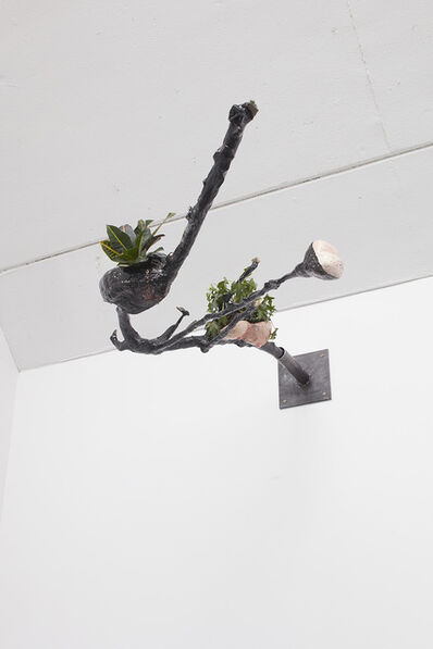 Laure Prouvost, 'Mouth Branch', 2015