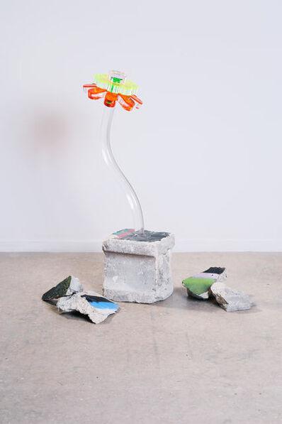 Gabriela Noelle, 'Flora 029B', 2019