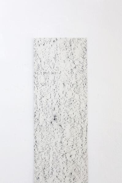 Lukas Marxt, 'Captive Horizon', 2015