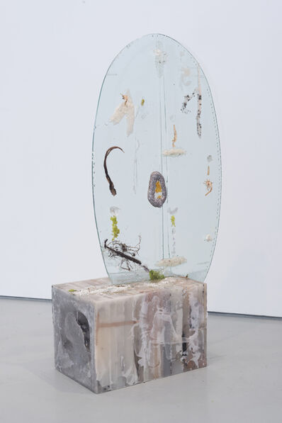 Heidi Norton, 'Ellipse with Nitrogen Fixers', 2014