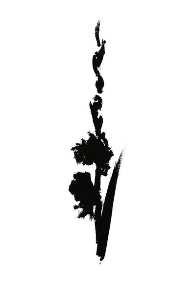 Veronique Gambier, 'Botanical Study · Gladiolus #4_Edition 1 of 10', 2019