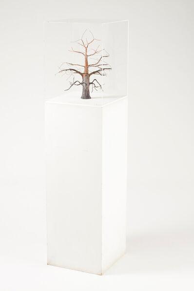 Miguel Branco, 'Untitled'