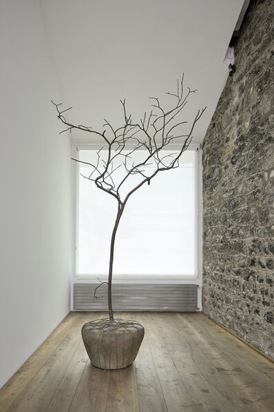 Su-Mei Tse 謝素梅, 'Trees & Roots #4  (in collaboration with Jean-Lou Majerus)', 2011
