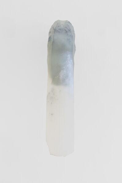 Adriano Amaral, 'Untitled', 2018