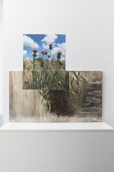 Asif Mian, 'Milkweed Stage', 2019