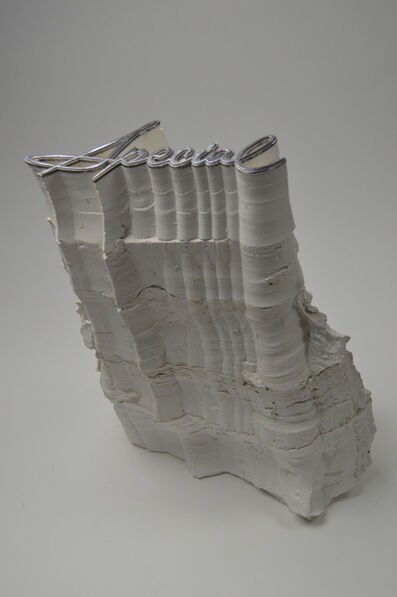 Charles Long, 'Anthropocene: Special', 2013
