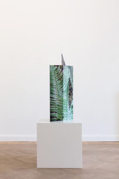 Letha Wilson, 'Pacific Fern Fold Steel ', 2019