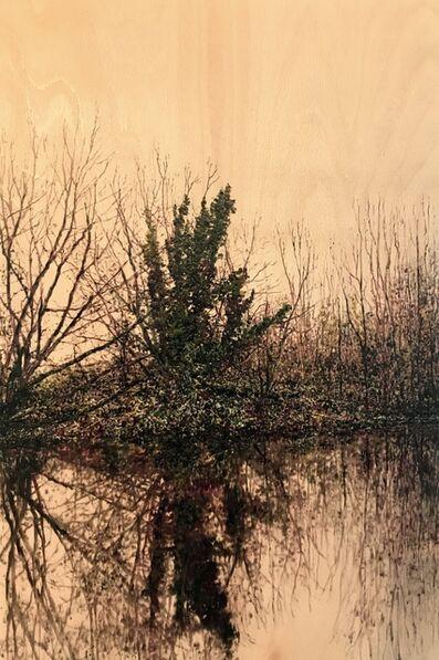 Jack Frame, 'Riverside Reflection II'