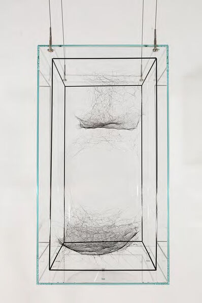 Tomás Saraceno, 'Hybrid Dark solitary solitary semi-social Cluster HD 190228 d built by: a solo Lyniiphidae sp. - three weeks, a solo Araneus sp.- one week and a solo Cyrtophora citricola- one week, rotated 180°', 2016