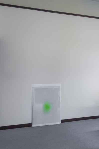 Daniel van Straalen, 'Opacity Test', 2014