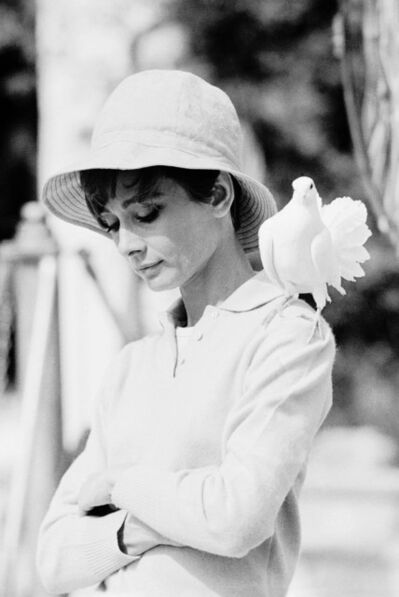 Terry O'Neill, 'A contemplative Audrey Hepburn with a dove perched on her shoulder, 1966.', 1966