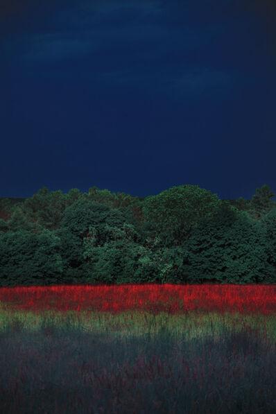 Erik Madigan Heck, 'Washington Landscape, Version 1, The Garden', 2020