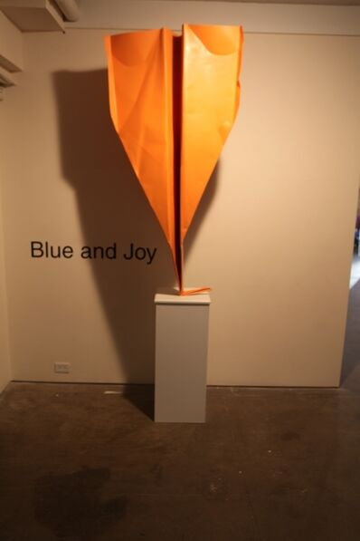 Blue and Joy, 'Big Orange Plane', 2013
