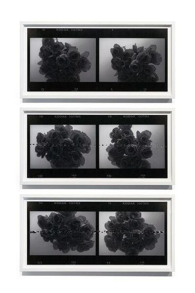 Leung Chi Wo 梁志和, 'Untitled (Roses)', 2015