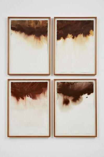 Thiago Rocha  Pitta, 'Unsedimented Maps', 2012