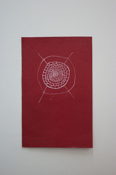 Sheroanawë Hakihiiwë, 'Tela de Araña', 2012