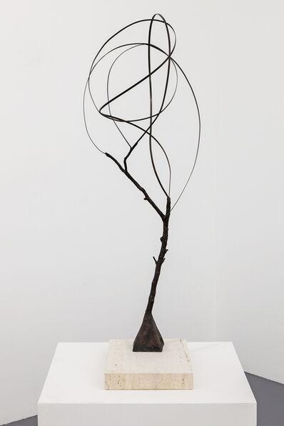 Pablo Reinoso, 'Still Tree Study VII', 2019