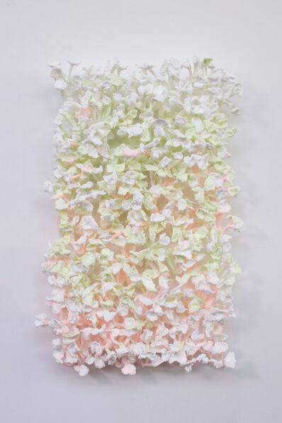 Stefan Gross, 'Bloomer Graded', 2017