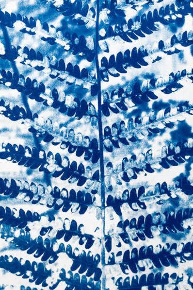 Laurie Lambrecht, 'Fern Blue', 2014