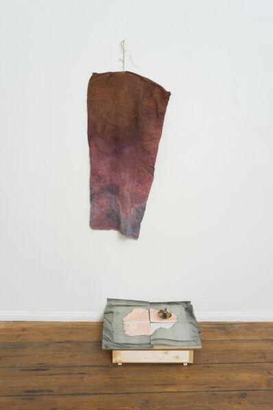 Ada Van Hoorebeke, 'Filter (red) - In Practice', 2013